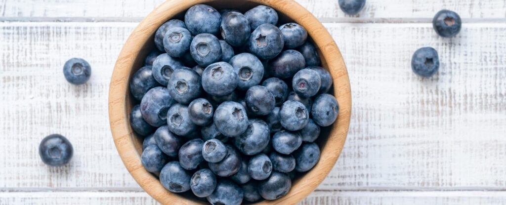 blueberries are good for your brain