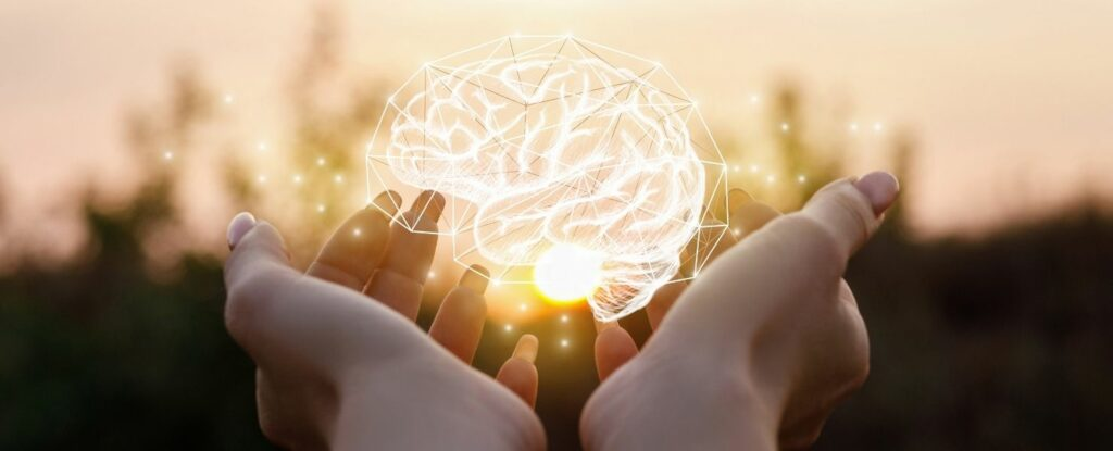 food that is good for an aging brain