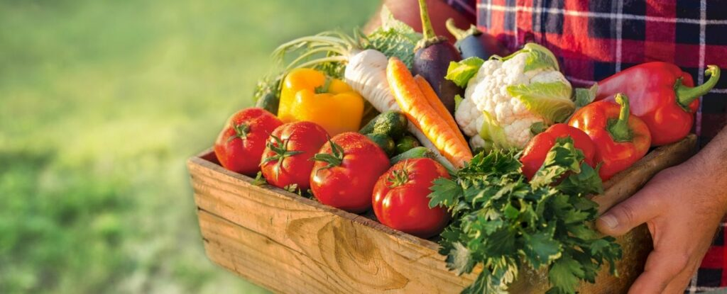 vegetables are high in minerals and great for improving bone health