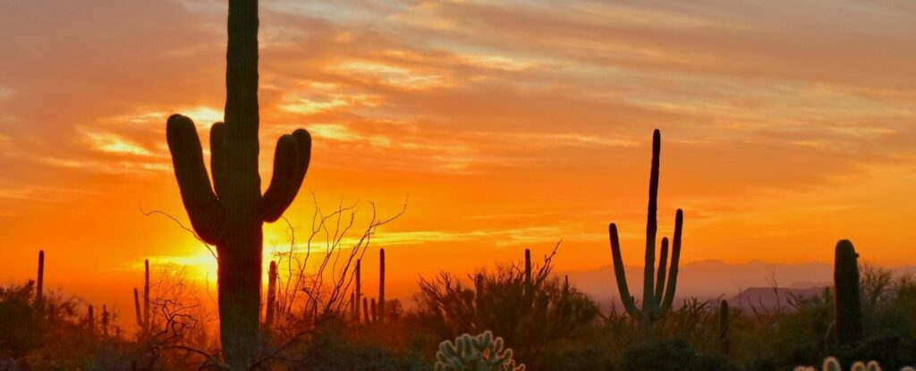 looking for vacation ideas for older couples? consider scottsdale arizona!